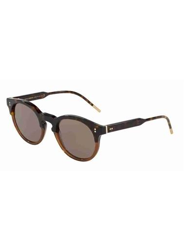 Dolce&Gabbana Dolce & Gabbana 4329 31674R 50 Ekartman Unisex Güneş Gözlüğü Kahve